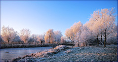 What a wonderful morning! (Margot) Tags: winter sun ice nature sunrise frost seasons achterhoek wintermorning margotpouw margot nederlandvandaag