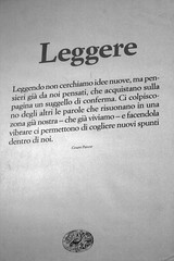 Leggere di _shalom