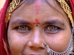 DSCF2828 (nirshimon) Tags: india nature nir