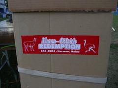 Llama Ostrich Redemption! (Zombie37) Tags: sticker funny bangor maine llama ostrich bumpersticker redemption