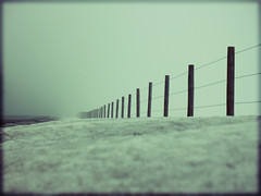 winter fence (Micah Taylor) Tags: winter field vanishingpoint post ground explore photoblog fense 359 tc111