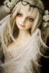 like an angel (Sassy Strawberry) Tags: doll dolls bjd flapper dollfie superdollfie volks abjd temperance dollfies bjds schoola scha sassystrawberry dolpa dolpa19 kunpoorou evildolly