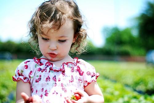 Strawberry Nadia-cake