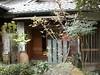 日本京都行屋與樹之美DSCN4990