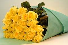 The meaning of yellow roses friendship and well wishes growing philippine flowers mightylinksfo