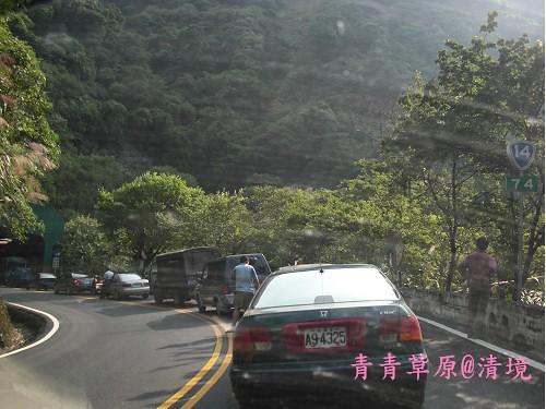 青青草原CIMG2837