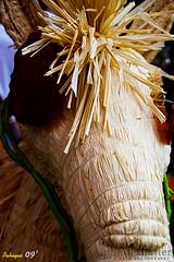 Pahiyas Festival 09' (infiniteshutter) Tags: festival nikon crafts philippines souvenir 1855mm quezon lata lucena lucban kiping longganisa d80 18135mm d40x infiniteshutter jeffreypoblete bethelgozar jeffreydpoblete bethelruthvgozar