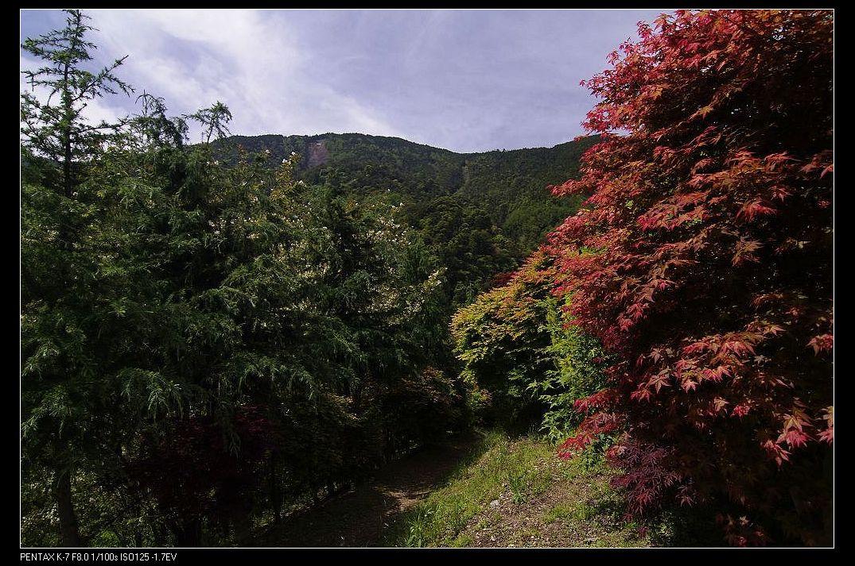 大鹿林道15K