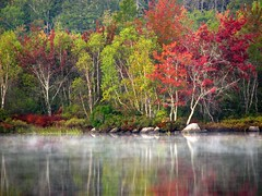 Morning mist rising (Nancy Rose) Tags: morning autumn trees mist lake leaves reflections bravo vivid damncool walkinthepark masterclass naturesfinest straightfromcamera blueribbonwinner eow supershot 25faves mywinners mywinner abigfave anawesomeshot colorphotoaward ultimateshot colourphotoaward superbmasterpiece superbmasterpiecegroup infinestyle fickrdiamond megashot citritgroup ysplix excellentphotographerawards onlythebestare excapture theperfectphotographer happinessconservancy