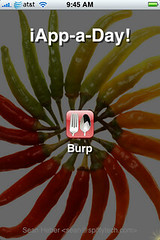 iApp-a-Day - Burp