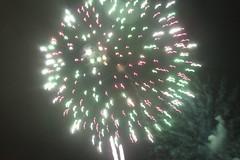 Redhill Bonfire #24
