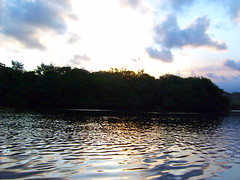 Sol no Mangue (Fabrcio Kriger) Tags: blue sunset sky cloud reflection mirror cu prdosol nuvem reflexo