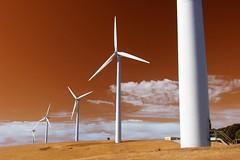 2050 (liam.jon_d) Tags: billdoyle south australia australian landscape windfarm wind power turbine fleurieupeninsula climatechange globel warming crisis theuncommonspace 10faves 1000 views 1000views views1000 top50 popular 100 500 mtloftyranges mountloftyranges lofties loftys adelaidehills loftyrangesimset pickmeset mostinterestingimset mostintlandscapeimset popularimset mostinterestingsaimset mostinterestinglandscapes 100mostimset mostinterestingsouthaustralia 100mosthq