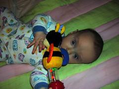 modDSCN9827 (csajos fotk) Tags: lilla