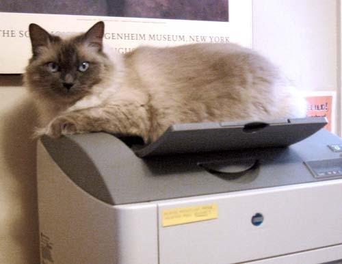 071024-jadis-printer.jpg