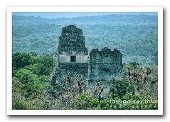 Tikal (Tony Glvez) Tags: world heritage de geotagged la site ruins maya guatemala selva unesco worldheritagesite mayan jungle tikal pyramids mundial floresta mata pirmides humanidad patrimonio patrimoniomundialdelahumanidad ph356 geoetiquetada