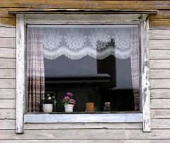 Forlatt vindu II - A window in an Abandoned house II (erlingsi) Tags: windows window norway ventana lace decay fenster norwegen story curtains janela gardiner grime oc scandinavia derelict 6100 fentre glas decayed volda fenetre norvege vinduer historie sunnmre vindu noreg decadencia fnster mreogromsdal skandinavia abbandono erlingsi erlingsivertsen decadncia fnster forlatt mre forfall aestheticsofdecay eyi potteplanter goldenphotographer ysplix nordvestlandet vindauge forfallent glaset  malingsslitt voldabackstage vderbitet malingsslten ikulissne ikulissene
