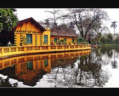 Vietnam - Hanoi (Megara Liancourt) Tags: yellow vietnam hanoi anawesomeshot aplusphoto theunforgettablepictures artlegacy flickrestrellas