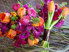 clashing beauty (morganiscool) Tags: pink wedding orange tulips newhampshire nh ranunculus anemone bouquet clashingcolors valleyflowercompany