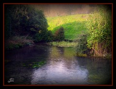 Pond (bonksie61) Tags: water pond smrgsbord abigfave adoublefave