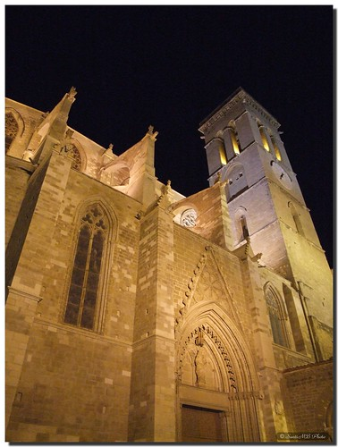 La Seu in the night / La Seu en la noche