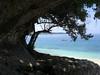 islandhopping_CIMG0539
