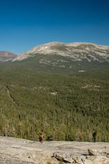 IMG_6696-Edit (dangerismycat) Tags: california yosemite yosemitenationalpark tuolumnemeadows lembertdome megha mammothpeak