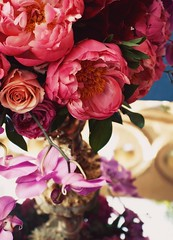 coral peonies (hanna.bi) Tags: venice wedding roses orchids indian centerpiece peonies hannabi