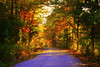 Invitation to a Drive... (~M~Chelle & her view***) Tags: road autumn trees usa fall nature beauty leaves drive natural mo missouri ozarks mywinners taneycounty thegoldenmermaid bransonarea ~m~chelle trilakesarea