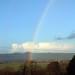 rainbow overload II