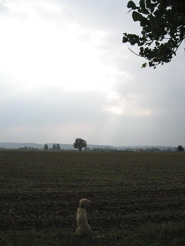 2007 091