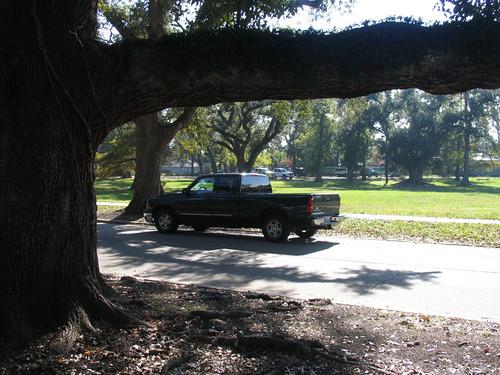 City Park - New Orleans, LA - November 28, 2007