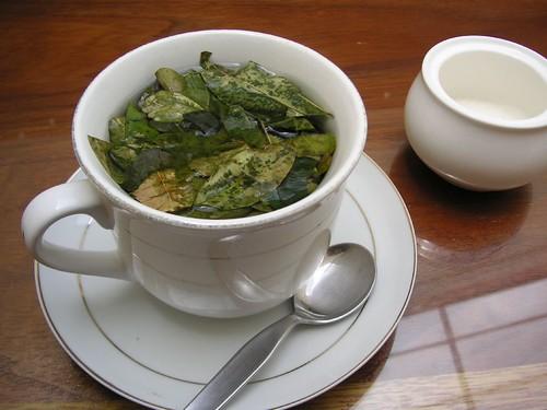 coca tea, matte de coca
