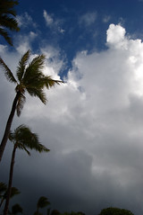 Storm coming in - Turtle Bay, Hi (wild thyme) Tags: clouds palms hawaii bay turtle approachingstorm
