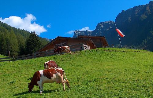 Malga in Alto Adige Italia