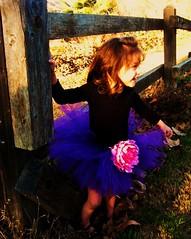 alissa08 372 (I Luv U Tutu Much) Tags: pinktutu babytutu toddlertutu girlstutu tutuphotoshoot iluvitutumuch etsytutu iluvututumuch girlstutus