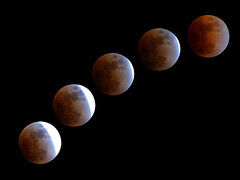 Progression of The Lunar Eclipse