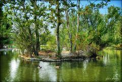 green lagoon (Kris Kros) Tags: california ca usa tree true digital photoshop landscape island photography duck high nikon dynamic lagoon socal kris d200 range 2009 tone hdr kkg blend blending cs3 firstquality photomatix digitalblending kros kriskros 5xp tthdr kk2k kkgallery