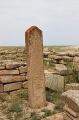 IMG_4130a (photoa99) Tags: كازاخستان kazakhstan қазақстан казахстан centralasia silkroad mangyshlak peninsula мангышлак necropolis cemetary tomb stone