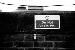 Prohibition (mgratzer) Tags: blackandwhite bw white black bird london sign prohibition showonmysite