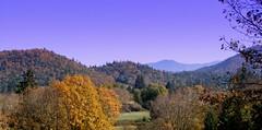 A view to see (mellowyellowkat41) Tags: soe flickrlite abigfave platinumphoto anawesomeshot wowiekazowie italianflickrworld