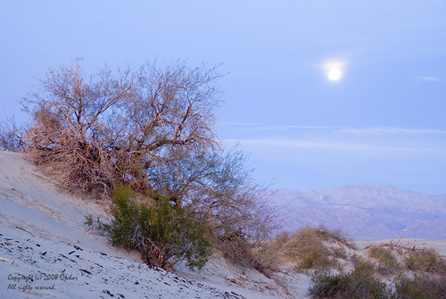 Dawn at Death Valley Sand Dunes