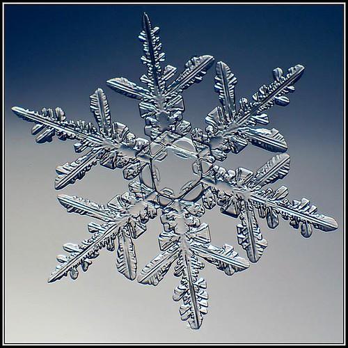 inspiration Challenge #23 - Snowflake