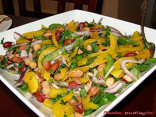 March 3 2008 ana yemekler mezeler salatalar leave a comment
