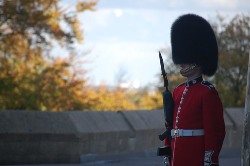 Windsor Guard