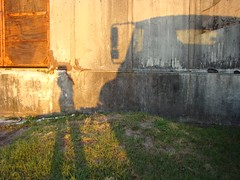 me and my shadow #4421 (mckenzieo) Tags: door rusty meandmyshadow oxidized accidentalselfportrait womansshadow mckenzieoerting purplehairedchick mckenzieo truckshadow
