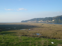 Humedal Tubul-Raqui (Ariel Sez) Tags: humedal raqui tubul tubulraqui