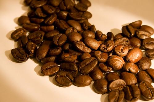 Cà phê chồn (Kopi Luwak Coffee), cà phê đắt nhất thế giới