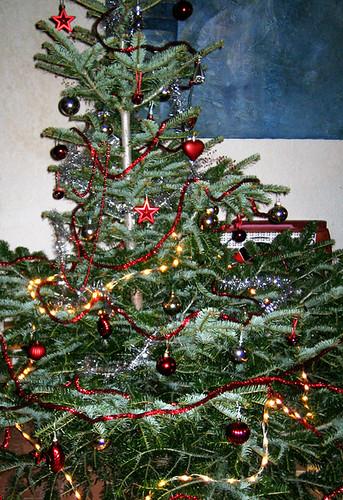 whole christmas tree