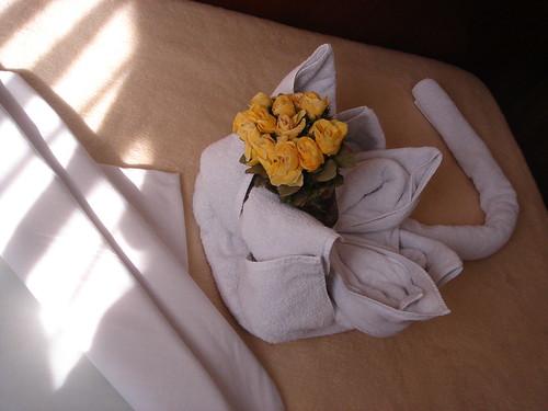整理房間的大叔送給我ㄧ朵浴巾做的花